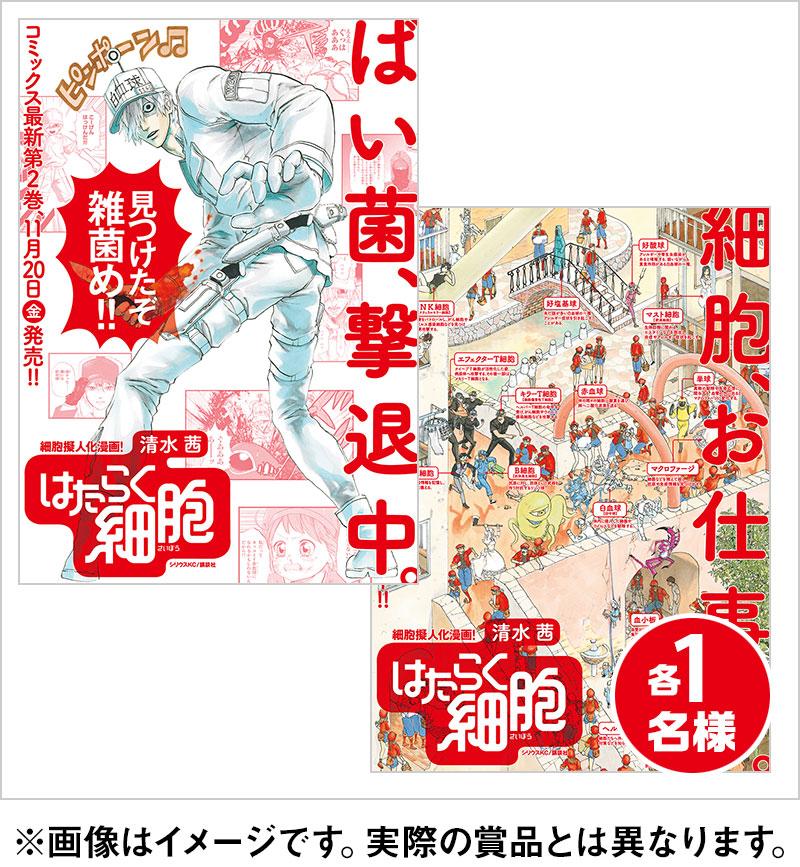 清水茜先生サイン入りポスター(2種)