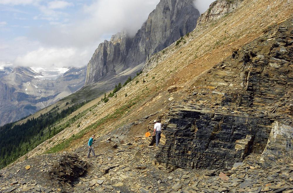 バージェス頁岩の画像 p1_2